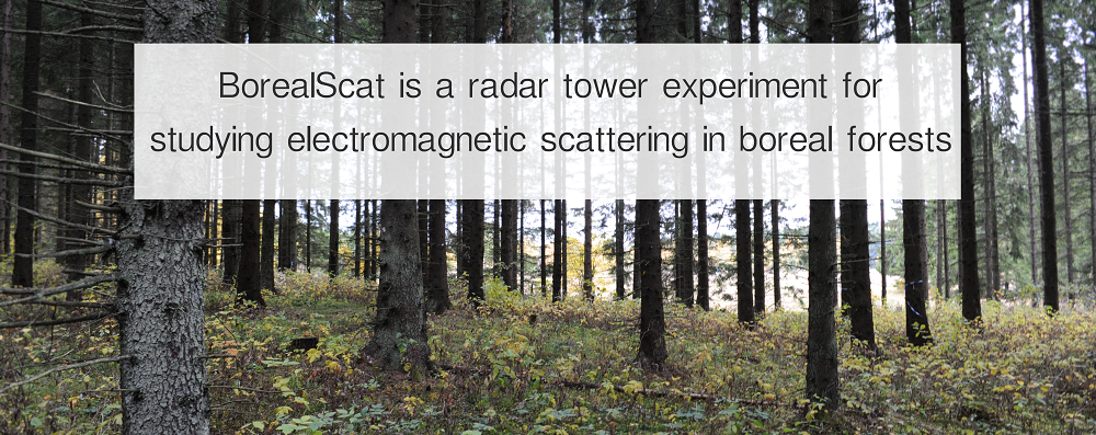 BorealScat | A radar experiment in the boreal forest